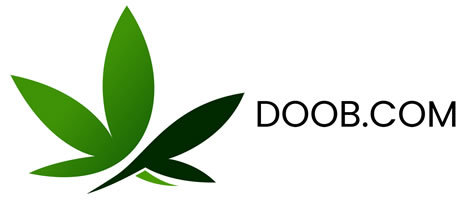 doob.com for sale